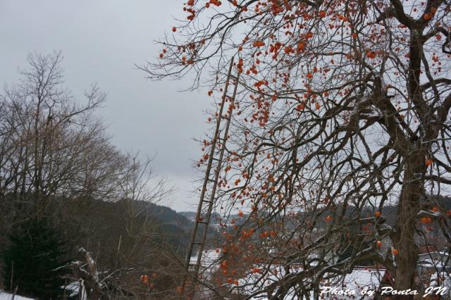 baachan1412-0002.jpg