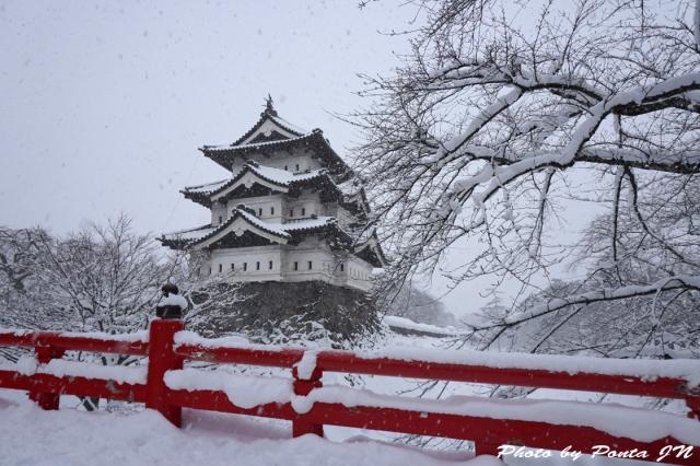 hirosaki1501-0011.jpg