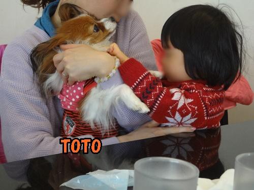 カフェで トトちゃんとロイママ&さくらちゃん