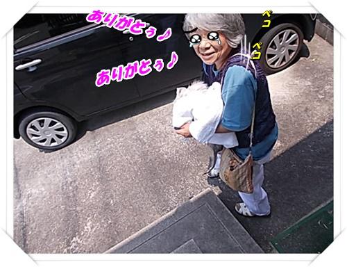 DSCN9788.jpg