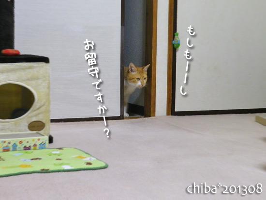 chiba15-08-22.jpg