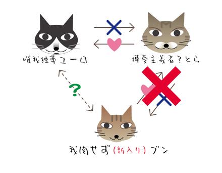 8月の猫たち