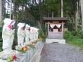 koshima13.jpg