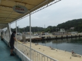 koshima20.jpg