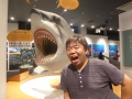 shark03.jpg