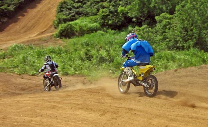 cub-race (81)