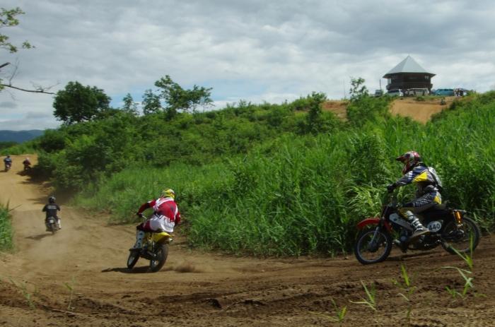 cub-race (86)