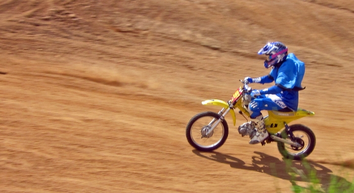 cub-race (95)