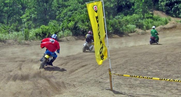 cub-race (148)