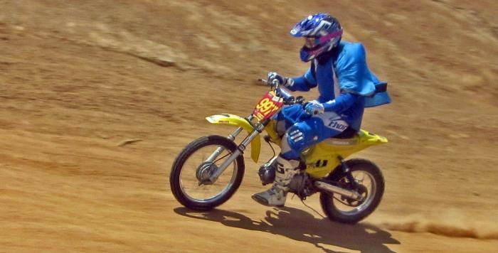 cub-race (231)