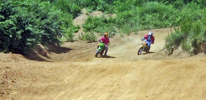 cub-race (253)