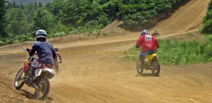 cub-race (256)
