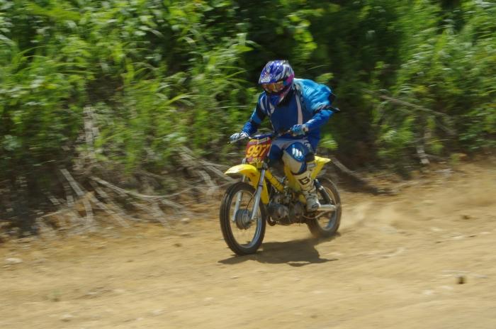 cub-race (262)