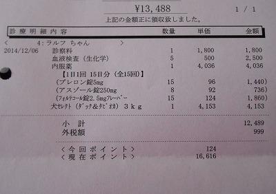 2014-12-06-03.jpg