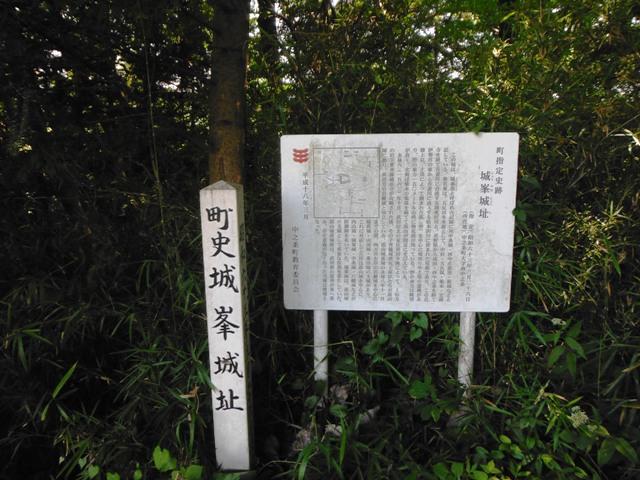 嵩山城(中之条町) (124)