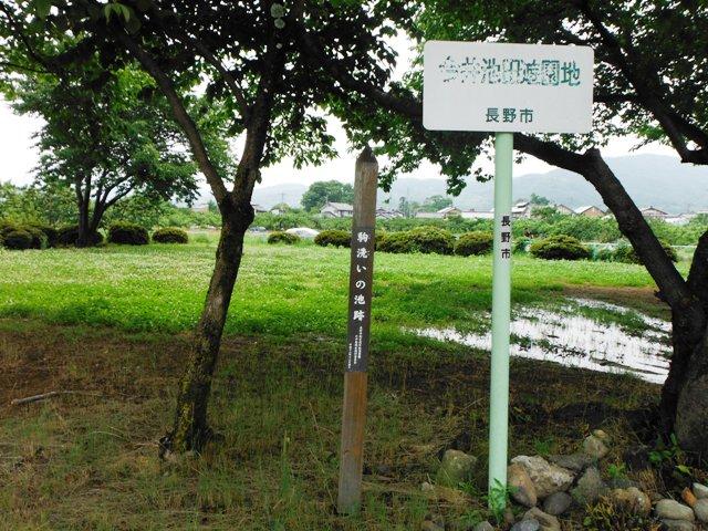 今井神社(長野市) (24)