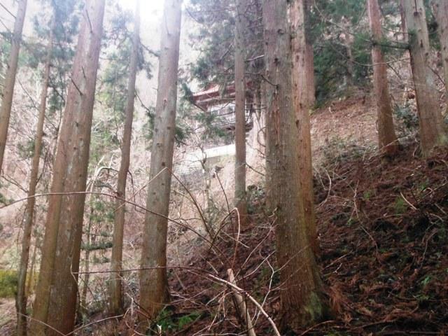 小虫倉山城 (62)