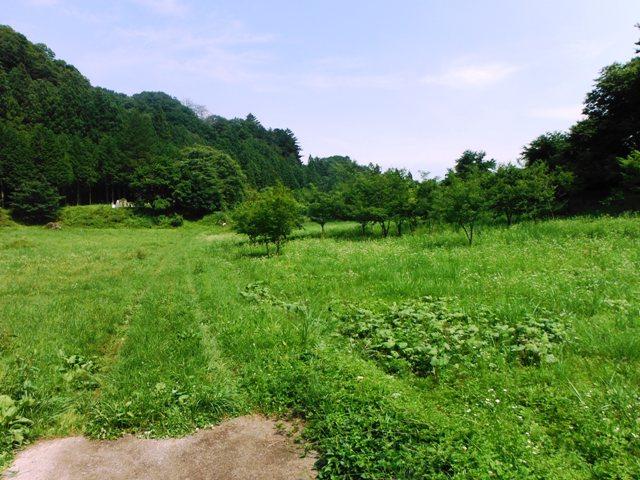 潜龍院跡 (19)