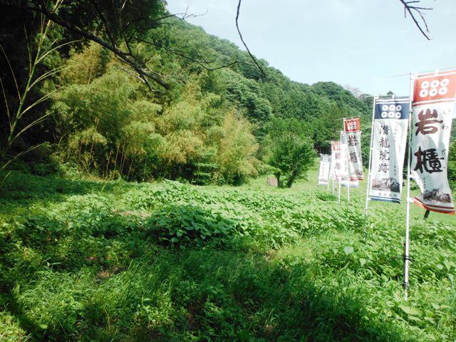 潜龍院跡 (36)