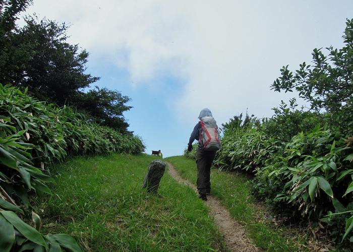 2015,8,1雷山~井原山-8