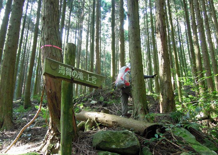 2015,8,1雷山~井原山-3