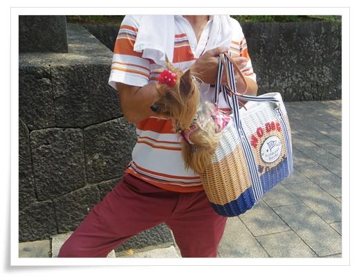 浅間神社IMGP3308-20150808