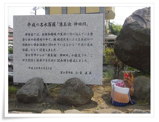 浅間神社IMGP3313-20150808