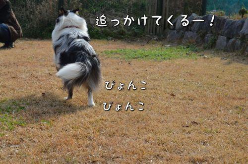 IMG_3254_2.jpg
