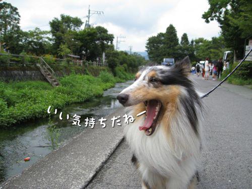 IMG_5727.jpg