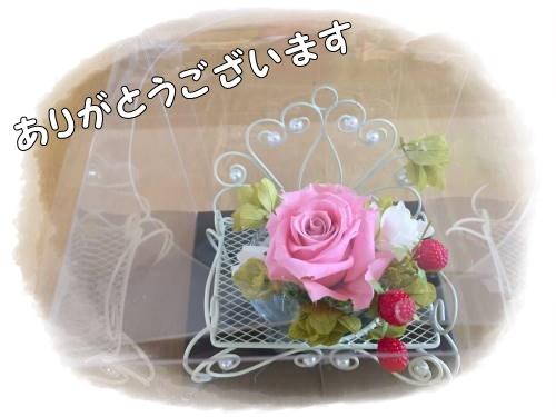 IMG_2919.jpg