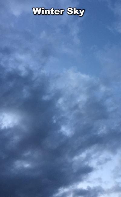 15012803.jpg