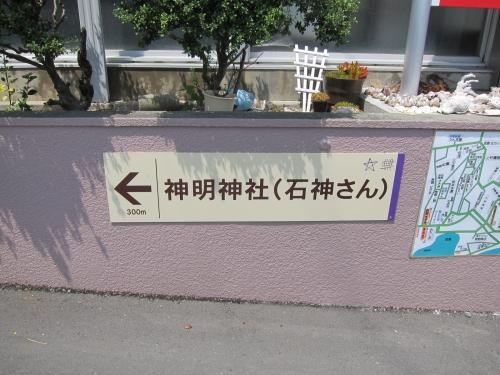 IMG_7046.jpg