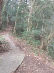 s-ツーリング登山野間岳・野間神社 (12)