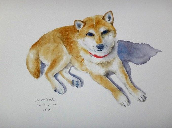 しゅわちゃん20150214A