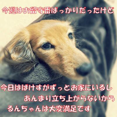 150205-01.jpg