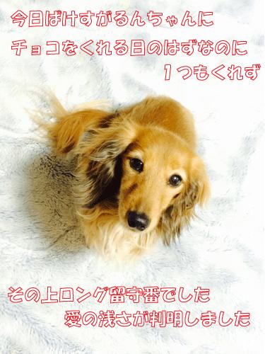 150214-01.jpg