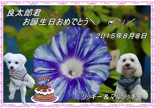 0808良太郎誕生日20150808