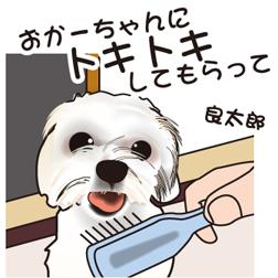 imgr_0_m.jpg