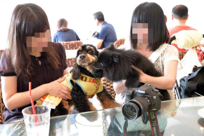 blog_DSC_4947.jpg