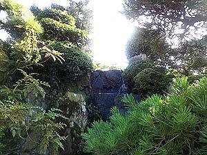 真夏の郷照寺4