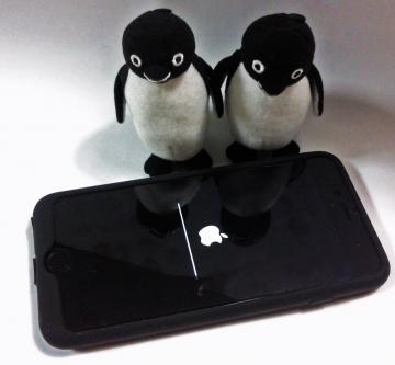 20150102-iPhone 6 Plus (1)-加工