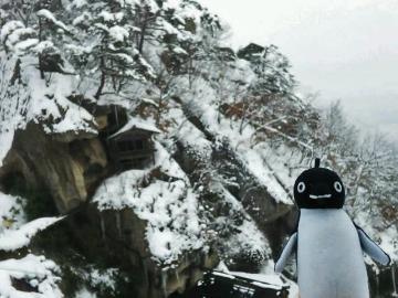 20150104-ICOCA ペンギンさんより (3)-加工