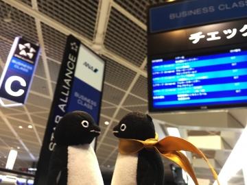 20150110-成田空港へ (20)-加工