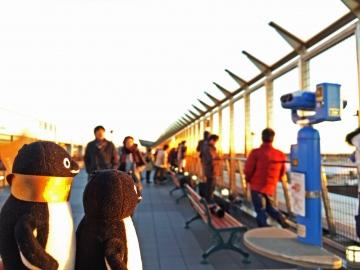 20150110-成田空港へ (8)-加工