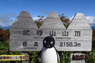 ペンギンさん山頂へ