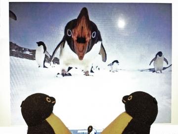 20150224-ペンギン (3)-加工
