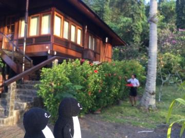 20150806-3-resort (285)