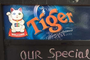 Manekineko and Tiger Beer
