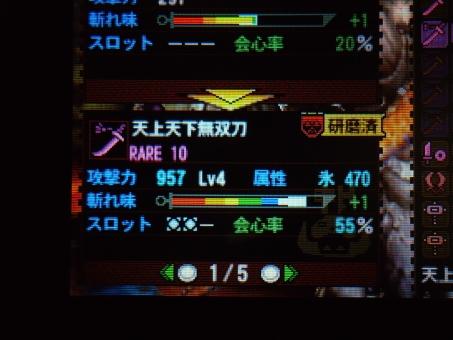 DSC00808_R.jpg
