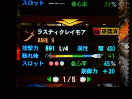 DSC00809_R.jpg